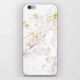Sakura Trails iPhone Skin
