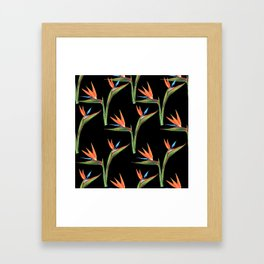 Bird of paradise flowers patten Framed Art Print