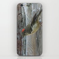 wallet iPhone & iPod Skins featuring Ruby-Crowned Kinglet At The Fountain by Ralph S. Carlson