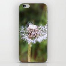 Times Ticking Away iPhone & iPod Skin