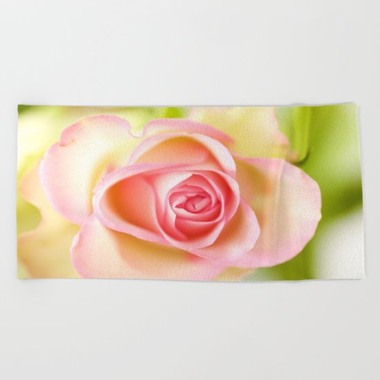 Lovely delicate pink rose Beach Towel