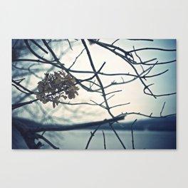 Winter Flower Canvas Print