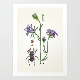 little spreading bellflower Art Print