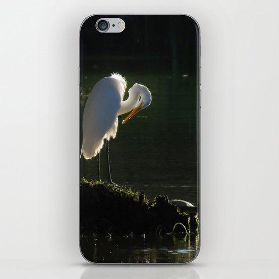 Egret at Evening iPhone & iPod Skin
