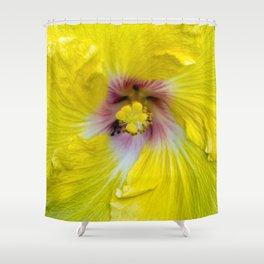 Yellow Hibiscus 17 5799 Shower Curtain