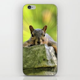 Relaxed Squirrel iPhone Skin