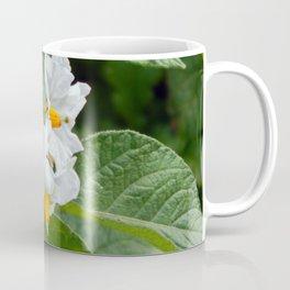 Potato Plant Flowers Coffee Mug