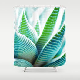 #134 Shower Curtain