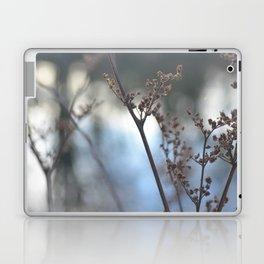 Winter Cow Parsley, Fine Art Photographic Print. Home Decor Laptop & iPad Skin