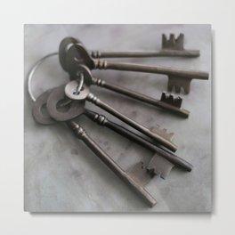 Set of  Keys  Metal Print