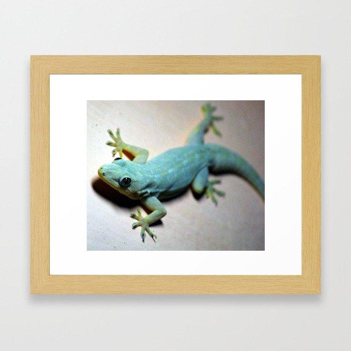 Look me in the Eye Framed Art Print