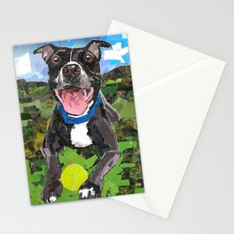 Sparky For Chicago Canine Rescue Stationery Cards
