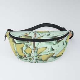 Blistered Paint Fanny Pack