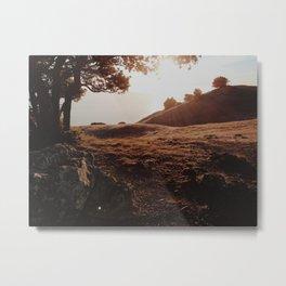 Sunset at Tamalpais Metal Print