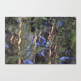 Mysterious Watter Canvas Print