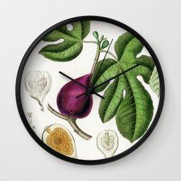 Vintage Fig Illustration  Wall Clock