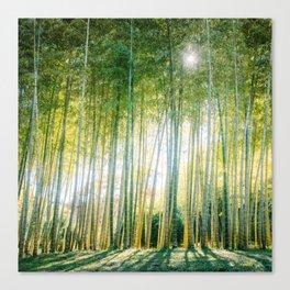 Japanese Bamboo Forest Fine Art Print Canvas Print