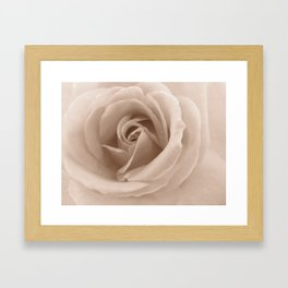 Rose in sepia Framed Art Print