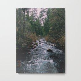 River In Lassen NP Metal Print