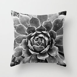 Sempervivum tectorum Throw Pillow