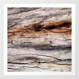 Shiver Me Timbers - 3 Art Print