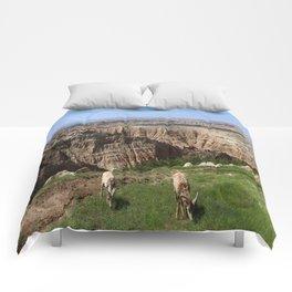 Bighorn Sheep At Sage Creek Comforters