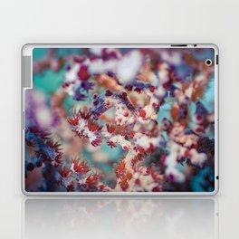 Brigebanti's pygmy seahorse Laptop & iPad Skin