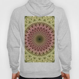 Detailed mandala in gold and red ones Hoody