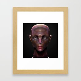 Darnel Framed Art Print