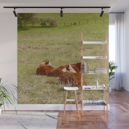 Cows Resting in Pasture Wall Mural