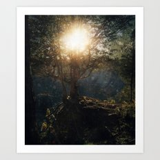 a special kind of night Art Print