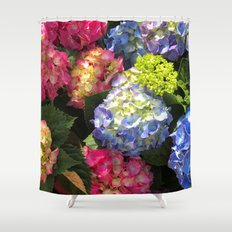 Colorful Hydrangea Flowers Shower Curtain