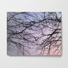 lovely evening Metal Print