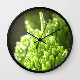 sunshine pond pine Wall Clock
