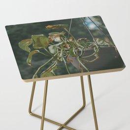 Vining Plant Side Table