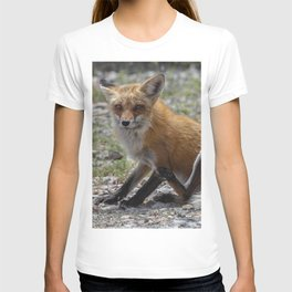 Itchy Fox T-shirt