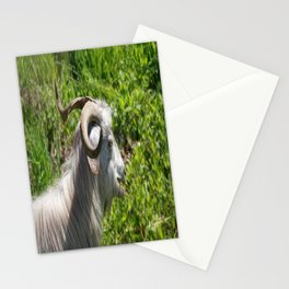 Side View of A Billy Goat Grazing Stationery Cards