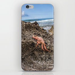 Un Crab iPhone Skin