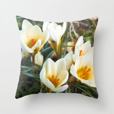 MEADOW of SPRING Throw Pillow