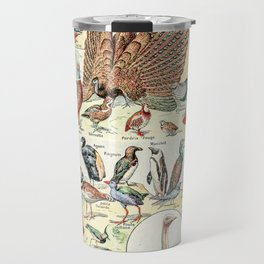 Wild Birds // Oiseaux by Adolphe Millot XL 19th Century Science Textbook Diagram Artwork Travel Mug