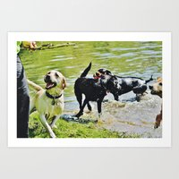 Dog Days of Summer Art Print