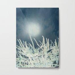 Silver Moon Metal Print