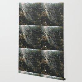 simple magic Wallpaper