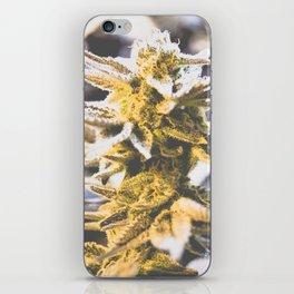 Beautiful Flower iPhone Skin