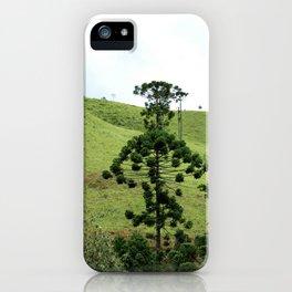 Araucaria iPhone Case