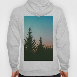 TREES - SUNSET - SUNRISE - SKY - COLOR - FOREST - PHOTOGRAPHY Hoody