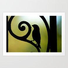Bird on the Ironwork Art Print