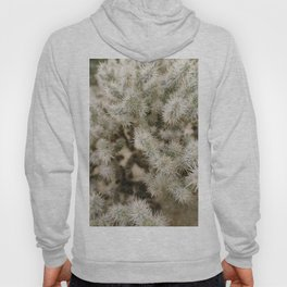 West Coast Road Trip Series: Joshua Tree Pt. II Hoody