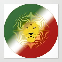 Lion And Sun Canvas Print