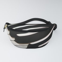Low Key Fanny Pack
